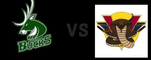 Cranbrook Bucks vs Vernon Vipers